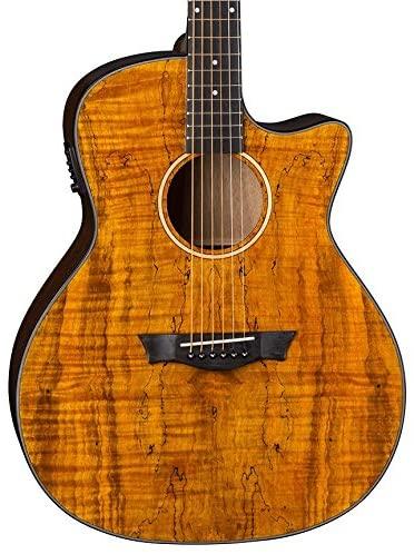 Dean-Acoustic-Electric-Guitar-Review