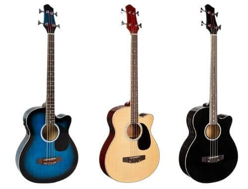 Best Choice Acoustic Bass Review