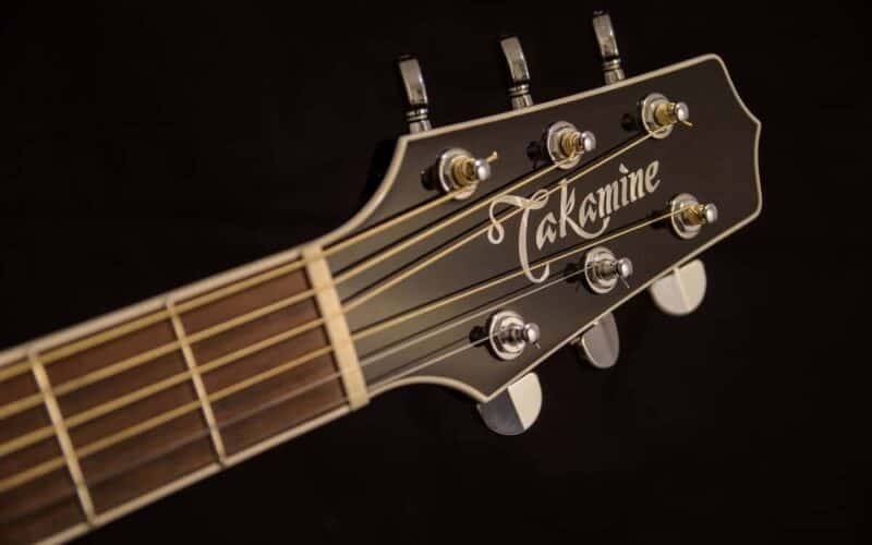 Takamine G Series Review