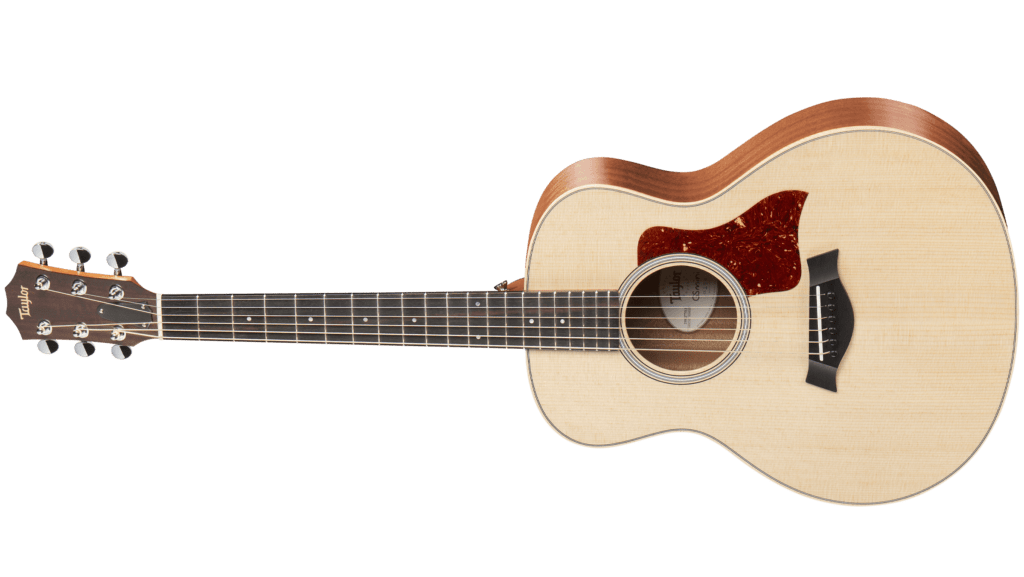 Taylor GS Mini Review (Is It The Best Investment in 2019